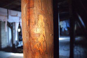 drewniany słup więźby dachowej porażony przez drewnojady